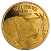 10 $ Dollar Little Spotted Kiwi Neuseeland 1/4 oz Gold PP 2018
