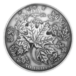 50 $ Dollar Convex Maple Leaf Leaves in Motion Kanada 5 oz Silber Antique Finish 2018 **