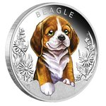 50 Cents Puppies - Hundewelpen - Beagle Tuvalu 1/2 oz Silber 2018 PP **