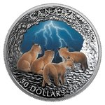 50 $ Dollar Nature's Light Show - Stormy Night Kanada Dome Shaped 5 oz Silber PP 2018 **