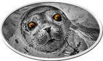 2 $ Dollar Animal Skin Baby Seal Pinniped - Robbe Ultra-High Relief Niue Island 1 oz Silber 2018 **