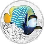 2 $ Dollar Reef Fish Collection - Angelfish - Kaiserfisch Niue Island 1 oz Silber PP 2018 **