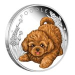 50 Cents Puppies - Hundewelpen - English Poodle - Pudel Tuvalu 1/2 oz Silber 2018 PP **