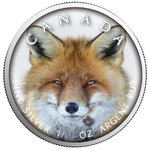 5 $ Dollar Canada's Wildlife - Red Fox - Rotfuchs Maple Leaf Farbe farbig 1 oz Silber Kanada 2019 **