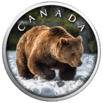 5 $ Dollar Trails of Wildlife - Grizzly Bear Maple Leaf Farbe farbig 1 oz Silber Kanada 2019 **