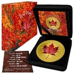 5 $ Dollar Red Maple Leaf Kanada 1 oz Silber vergoldet 2019