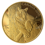 350 $ Dollar Canadian Wildlife Portraits - The Cougar - Puma Kanada Gold PP 2019