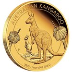 25 $ Dollar Australian Kangaroo Gold Proof - Känguru 1/4 oz Gold PP 2020